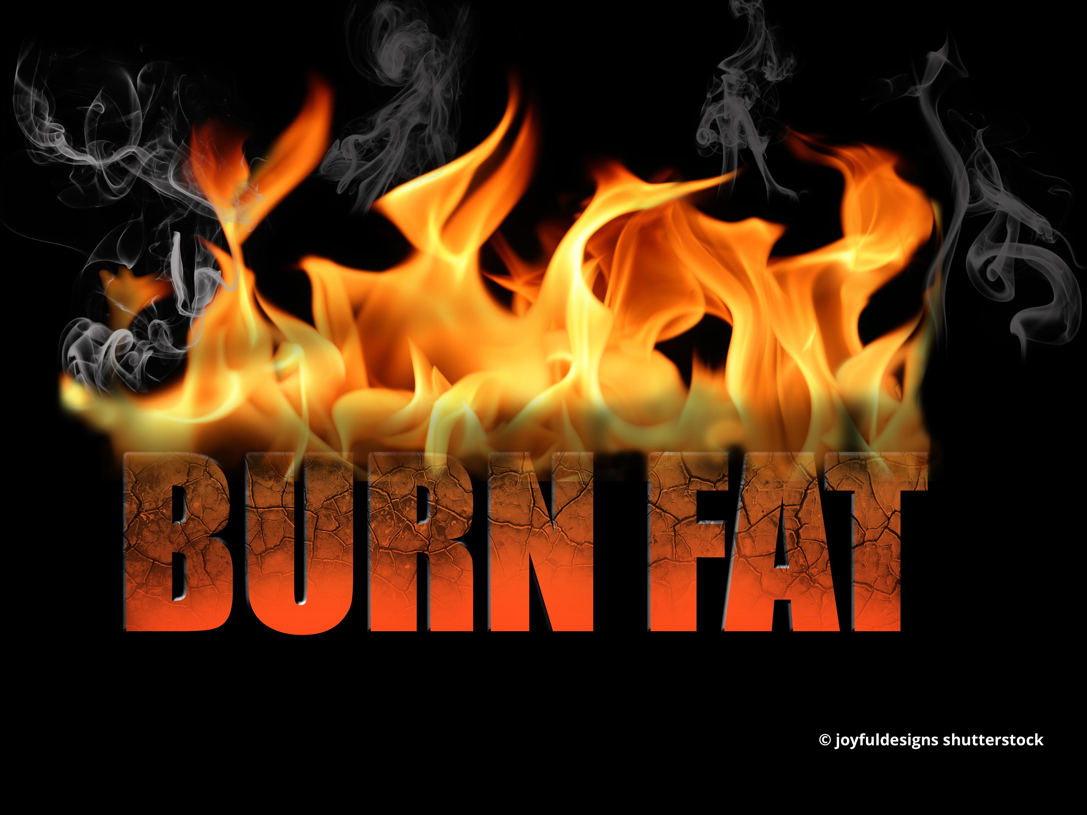 Warum Diäten dick machen. Oder: Bist du ein Zucker- oder ein Fettverbrenner?