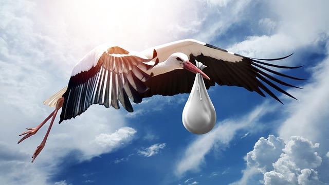 Ein Storch bringt ein Baby