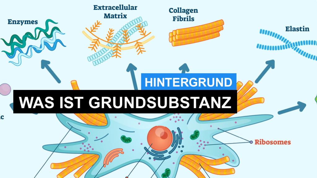 Was ist Kollagen- und Grundsubstanz im Bindegewebe?