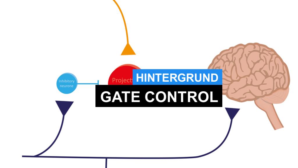 Gate Control Theory einfach erklärt - Was ist bzw. beschreibt die Gate-Control-Theorie