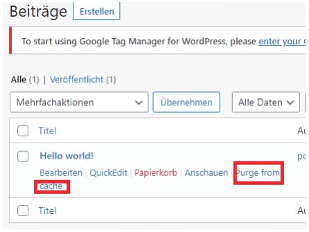 wordpress beiträge cache leeren