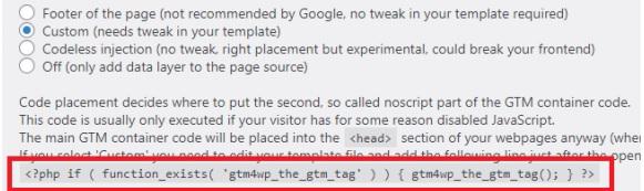 Google Tag Manager Wordpress php