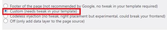 Google Tag Manager Wordpress  custom einbinden